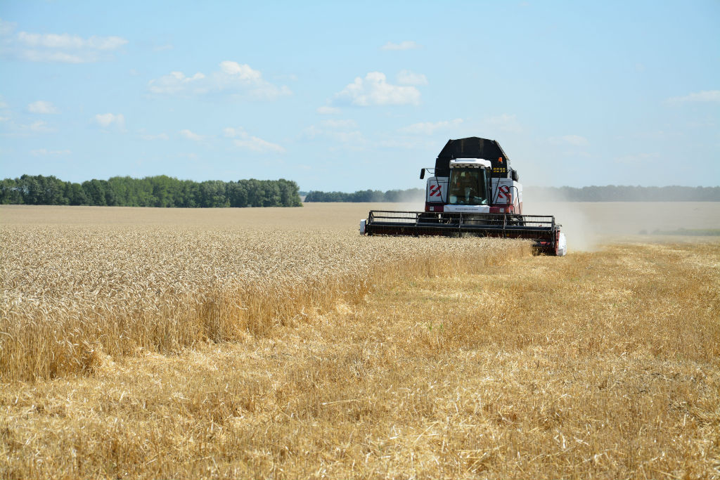 Уборка урожая АПХ «ПРОМАГРО»